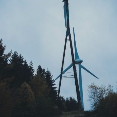 Waldspaziergang-014
