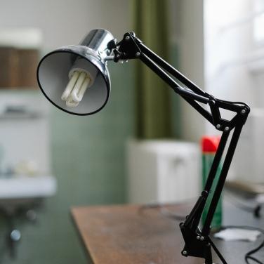 Meister Lampe?