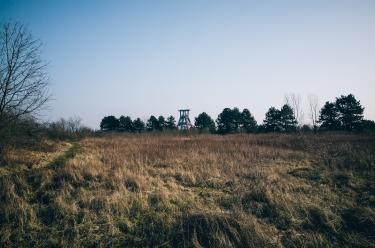 Haldenlandschaft 04