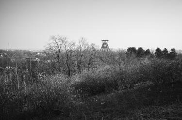 Haldenlandschaft 05